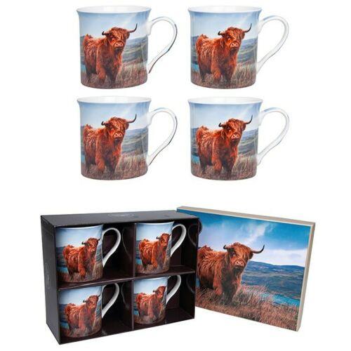 Highland Cow Mugs - Set of 4, gift boxed