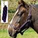 Rhinegold Nylon Horse Headcollar with Matching Lead Rope Black & Purple