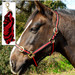 Rhinegold Nylon Horse Headcollar with Matching Lead Rope Black & Red