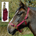 Rhinegold Nylon Horse Headcollar with Matching Lead Rope Burgundy