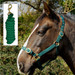 Rhinegold Nylon Horse Headcollar with Matching Lead Rope Green