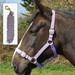 Rhinegold Nylon Horse Headcollar with Matching Lead Rope Lilac