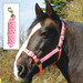 Rhinegold Nylon Horse Headcollar with Matching Lead Rope Pink