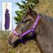 Rhinegold Nylon Horse Headcollar with Matching Lead Rope Purple