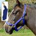 Rhinegold Nylon Horse Headcollar with Matching Lead Rope Royal Blue