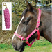 Rhinegold Nylon Horse Headcollar with Matching Lead Rope Raspberry