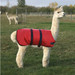 Alpaca & Llama Coat - Waterproof and Padded