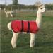 Alpaca & Llama Coat - Waterproof and Padded