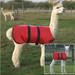 Alpaca & Llama Coat - Waterproof and Padded with cria