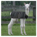 Cria Coat Black