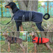 Dog Coat Waterproof and padded Black Red & Brown