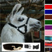 Llama Snap Fastening Headcollar - With Lead - SPECIAL OFFER