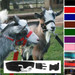 Goat Snap Fastening Headcollar - With Lead - SPECIAL OFFER