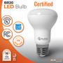 Sunlake Lighting BR20 LED bulb UL Classified, Energy Star rated, 10-year warranty, FCC compliant, USA-based