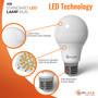 SunLake Lighting Standard LED Lamp bulb A19 60 watt replacement 9 watt LED, glare free smooth lens design, premium quality LED chip board, E26 standard screw base