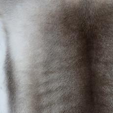 Reindeer Hide FRD002 (120cm x 115cm)