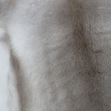 Reindeer Hide FRD007 (120cm x 115cm) (FRD007)