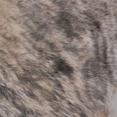 Cowhide Rug APR081-21 (210cm x 190cm)