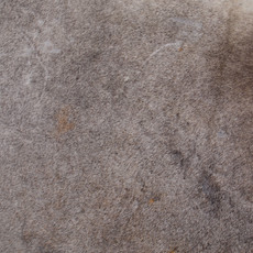 Cowhide Rug APR088-21 (240cm x 190cm)