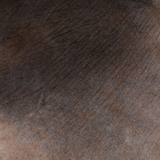 Cowhide Rug APR090-21 (230cm x 190cm)