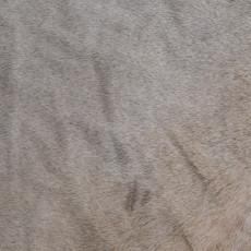Cowhide Rug APR208-21 (250cm x 210cm)