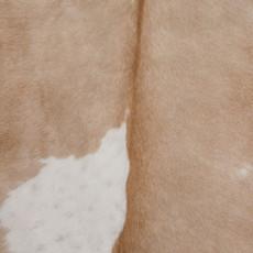 Cowhide Rug APR212-21 (230cm x 210cm)