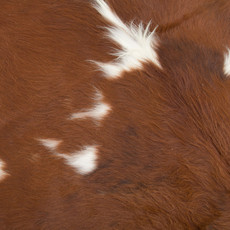 Cowhide Rug MAY011-21 (210cm x 210cm)