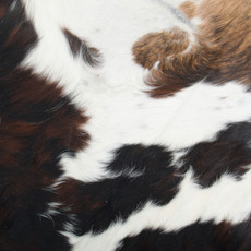 Cowhide Rug MAY053-21 (220cm x 220cm)