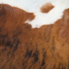 Cowhide Rug MAY122-21 (220cm x 200cm)