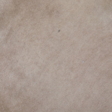 Cowhide Rug JUNE011-21 (190cm x 170cm)