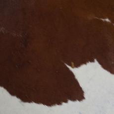 Cowhide Rug JUNE196-21 (230cm x 190cm)
