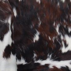 Cowhide Rug AUG121-21 (170cm x 170cm)