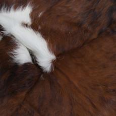 Cowhide Rug AUG198-21 (220cm x 190cm)