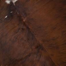 Cowhide Rug SEP109-21 (210cm x 180cm)