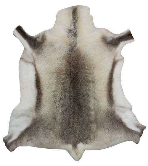 Reindeer Hide FRD003 (120cm x 115cm)