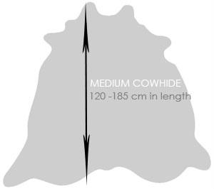Shop Medium Cowhide Rugs