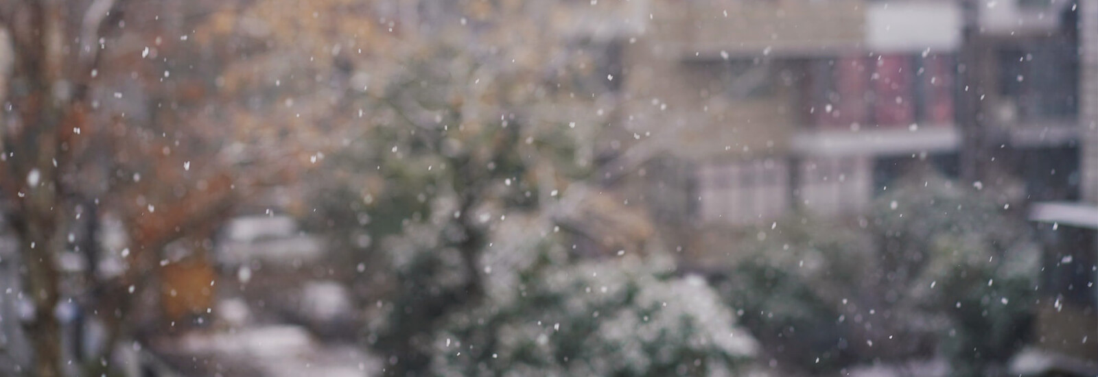 Let It Snow! How to beat the winter weather with Ice Melt....