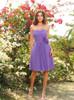 Light Purple Bridesmaid Dresses,Chiffon Short Bridesmaid Dress,11399