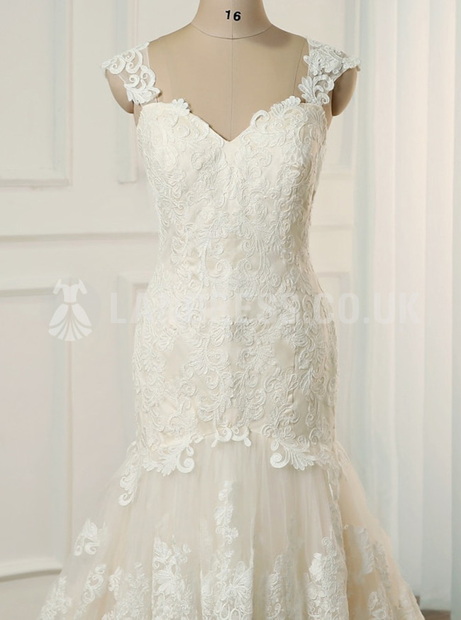 Plus Size Champagne Wedding Dress,Lace Trumpet Bridal Dress,Elegant Wedding Dress,11150