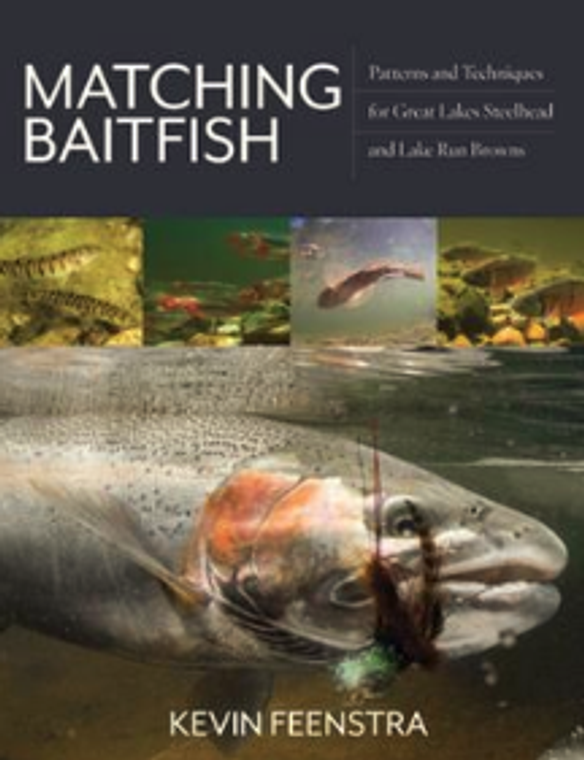 Matching Baitfish Patterns