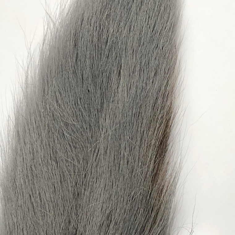Bucktail, Gray