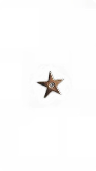 PK063D DIAMOND  STAR PIN