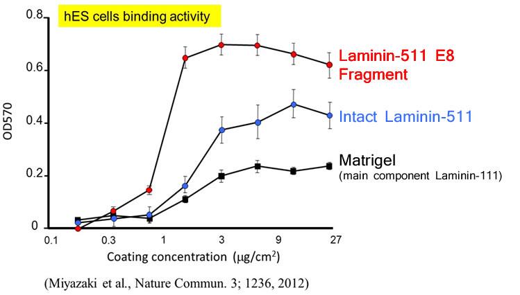 imatrix-binding-activity.jpg