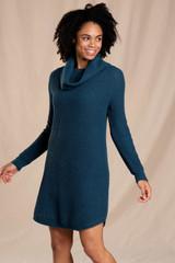 Toad&Co Women's Chelsea Turtleneck Dress