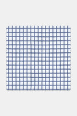 Byron Custom Wrinkle-Resistant Navy Grid Check