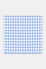 Byron Custom Wrinkle-Resistant Blue Grid Check