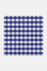 Byron Custom Performance Indigo Gingham