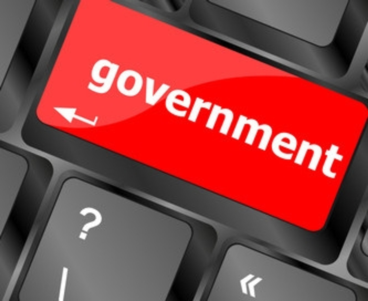 Government Sales