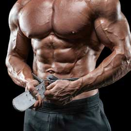 Gym & Fitness Belts