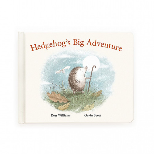 Hedgehog's Big Adventure